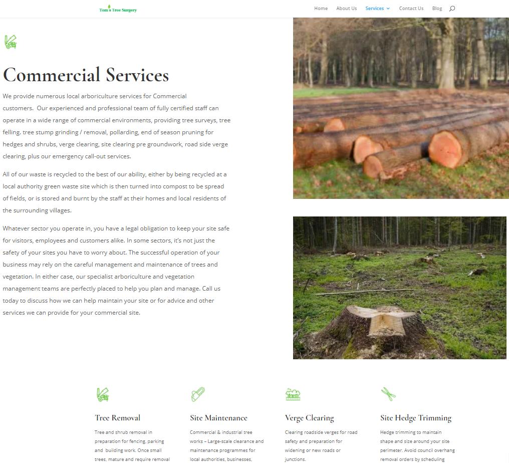 Website screen shot 3